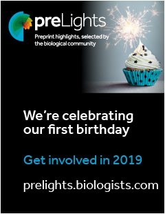 Celebrating preLights' first Birthday