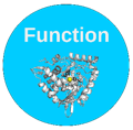 Function SIG: Gene and Protein Function Annotation