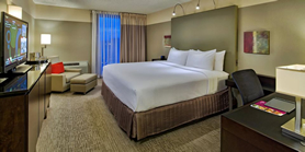 Crowne Plaza Chicago Metro Hotel