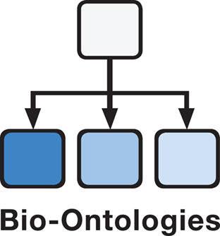 Bio-Ontologies